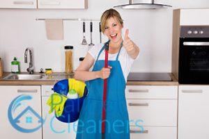 Pro Maid
